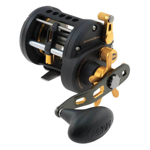 Penn Fathom Star Drag Reel - Fishing's Finest