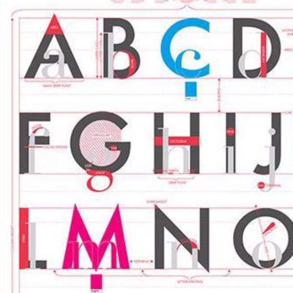 Alphabet Of Typography - Northlight Homestore