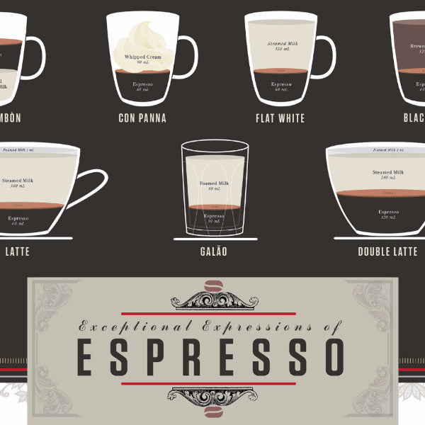 Exceptional Expressions of Espresso - Northlight Homestore