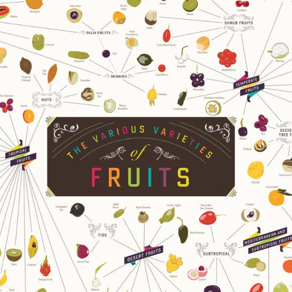 The Various Varieties of Fruit - Northlight Homestore