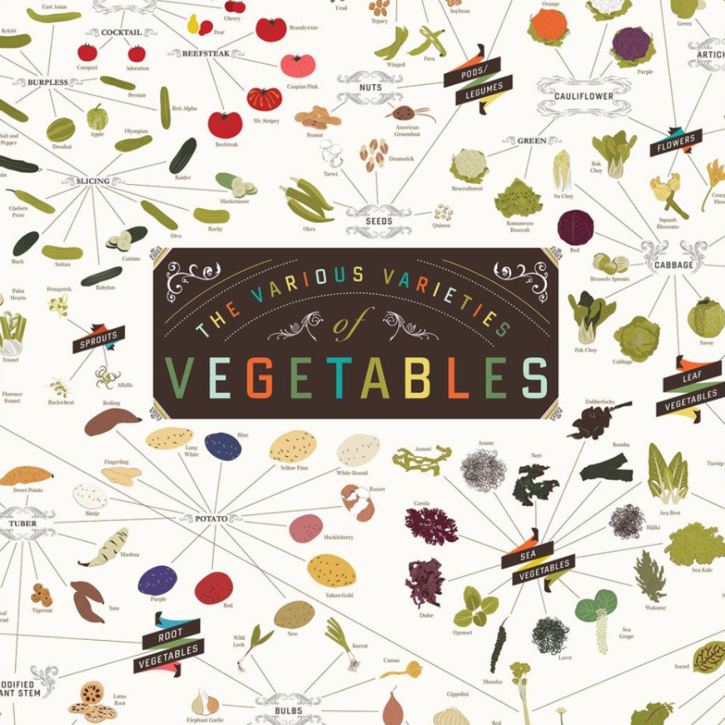 The Various Varieties of Vegetables - Northlight Homestore