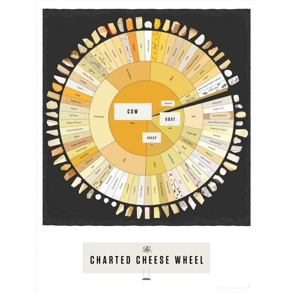 "The Charted Cheese Wheel Art Prints 18"" x 24"""