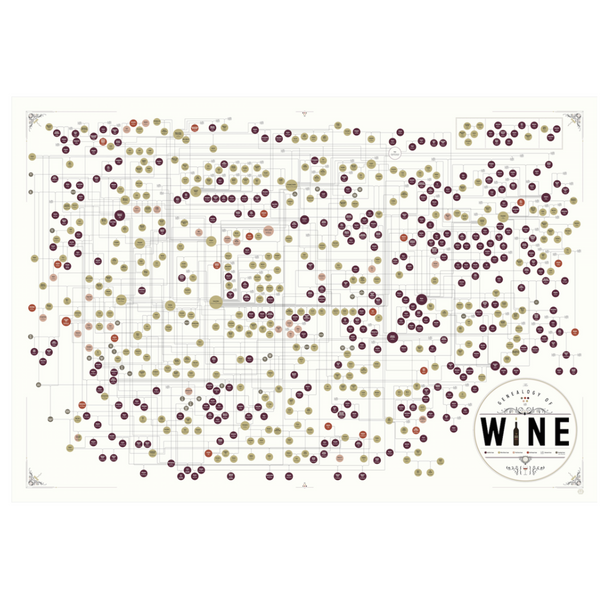 "The Genealogy of Wine 39"" x 27"""