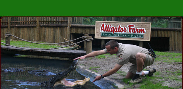 Alligator Farm Tickets Family 4-Pack