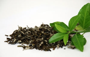 GREEN TEA LEAF EXTRACT GREEN TEA