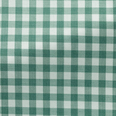 Weba-white-cotton-with-pine-check-BB118gr Fabric
