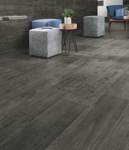 Aster Grey Timber