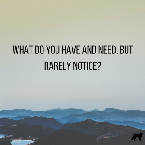 What do you have and need, but rarely notice?