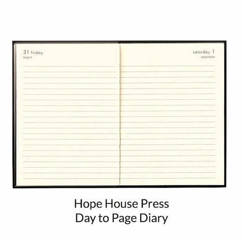 Day To View 2017 diary