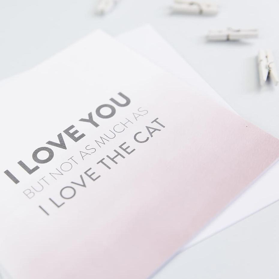 Funny Cat Lover Card for boyfriend or girlfriend - 'I love you but not as much as I love the cat'