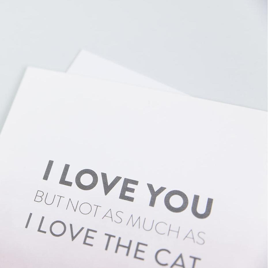 Funny cat anniversary or valentine's day card for boyfriend, girlfriend, husband or wife 'I love you'
