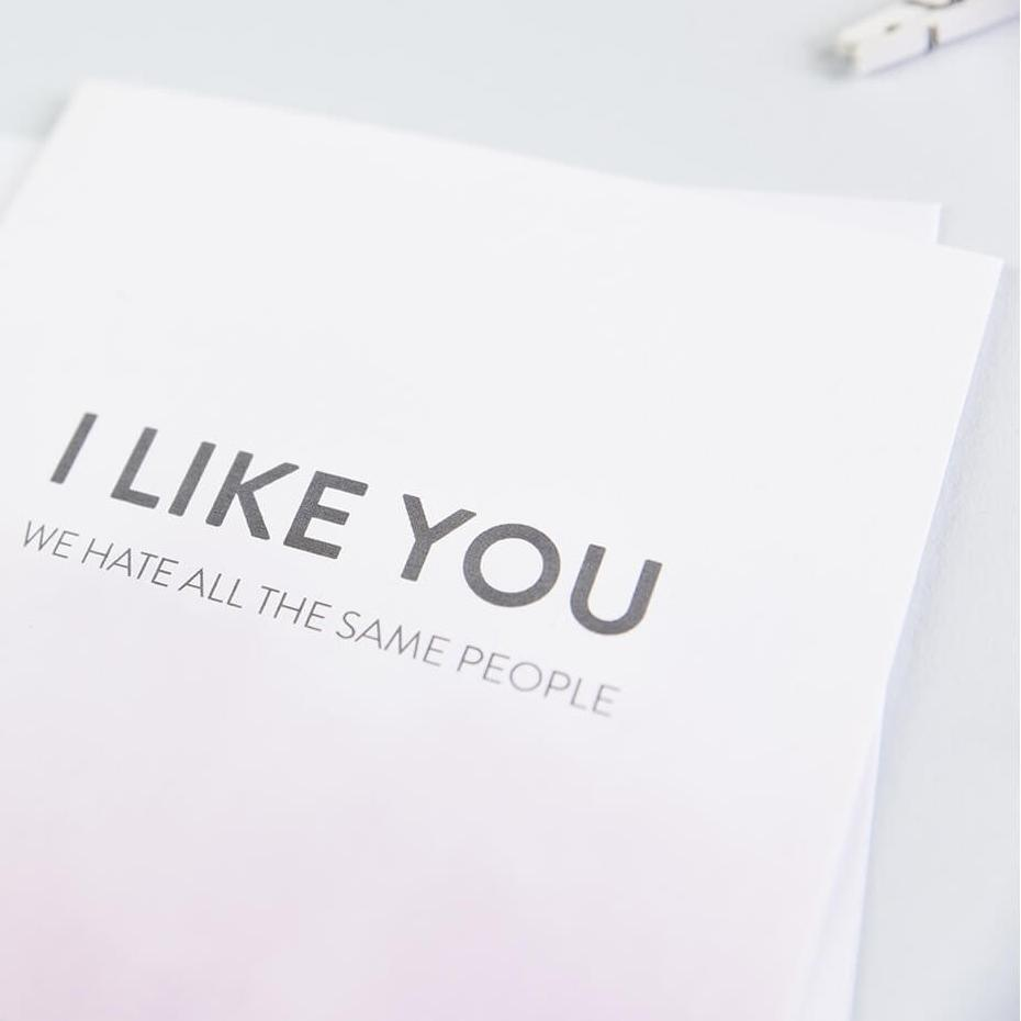Hate people cards - 'I like you, we hate all the same people' funny friendship card