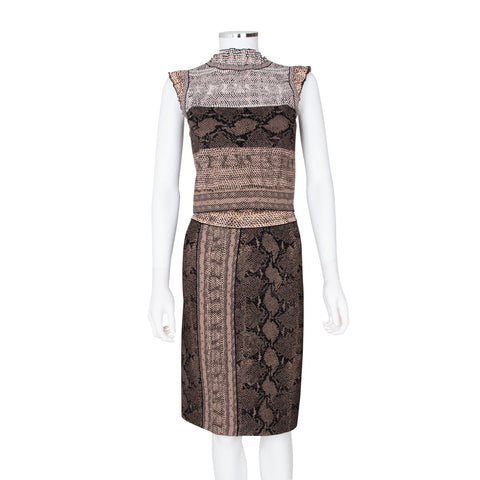 Alexander McQueen Python Print Top and Skirt Set