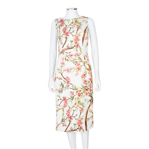 Dolce & Gabbana Floral Printed Sleeveless Knee Length Dress
