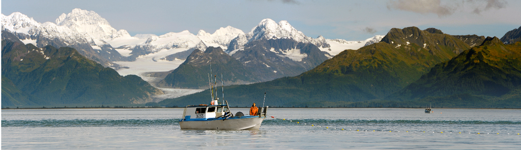 Alaskan Salmon is RFM Certified!