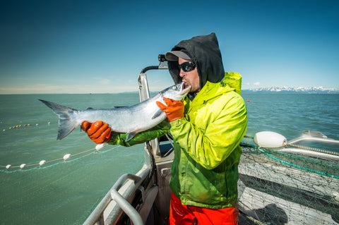 Sustainable wild caught alaskan copper river salmon