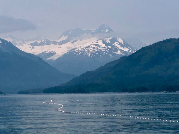 FISHING FOR COPPER RIVER SALMON