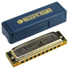 Hohner Blues D Harmonica