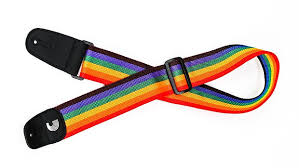 Planet Waves Polypro Strap  Rainbow