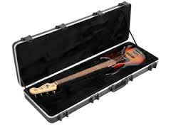 SKB Bass Case