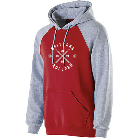 STYLE 229179 BANNER HOODIE