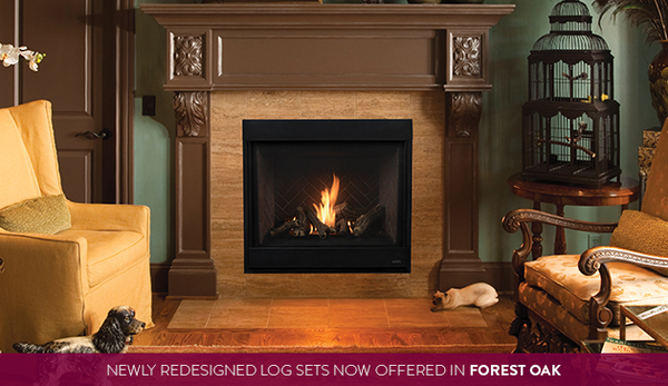 Gemini Direct Vent Gas Fireplace