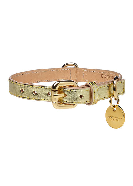 Metallic Dog Collar Gold