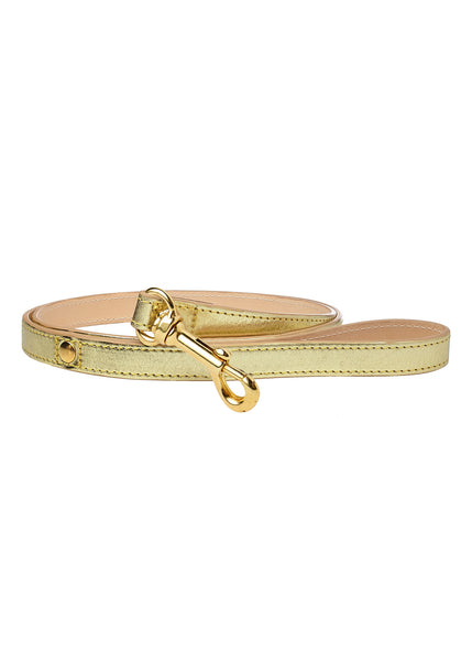 Metallic Dog Lead Gold