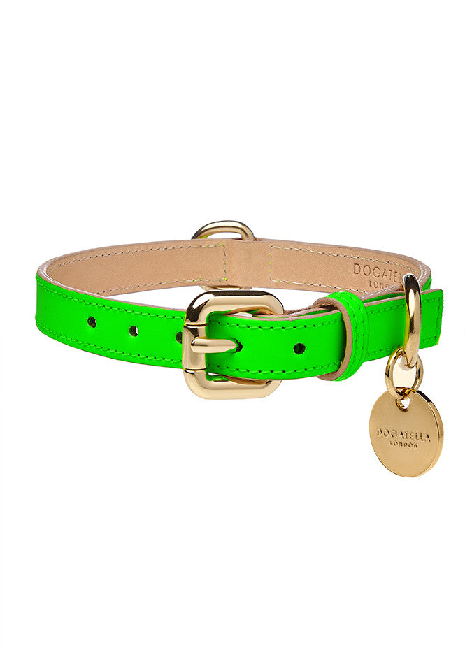 Glow Dog Collar Neon Green