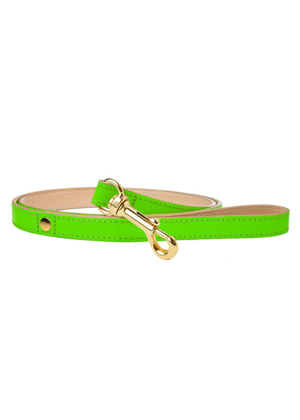 Glow Dog Lead Neon Green