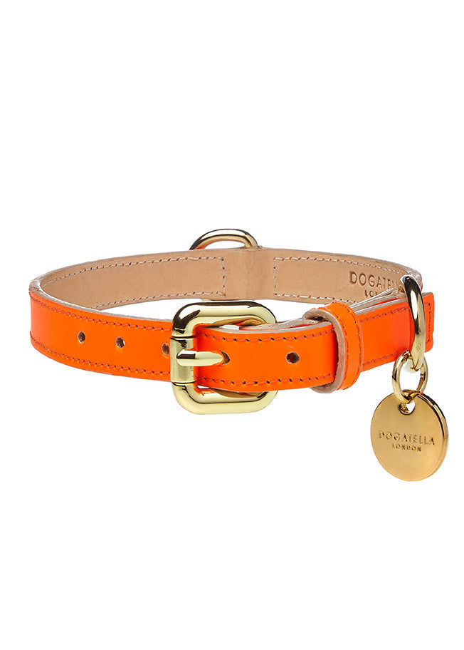 Glow Dog Collar Neon Orange