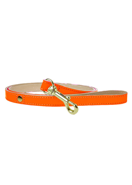 Glow Dog Lead Neon Orange