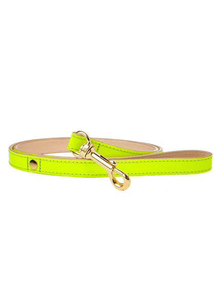 Glow Dog Lead Neon Yellow