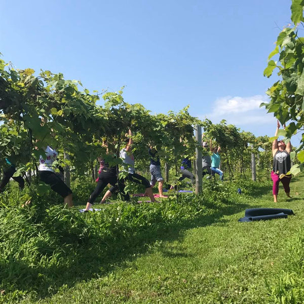 Yoga in the Vines - July 21