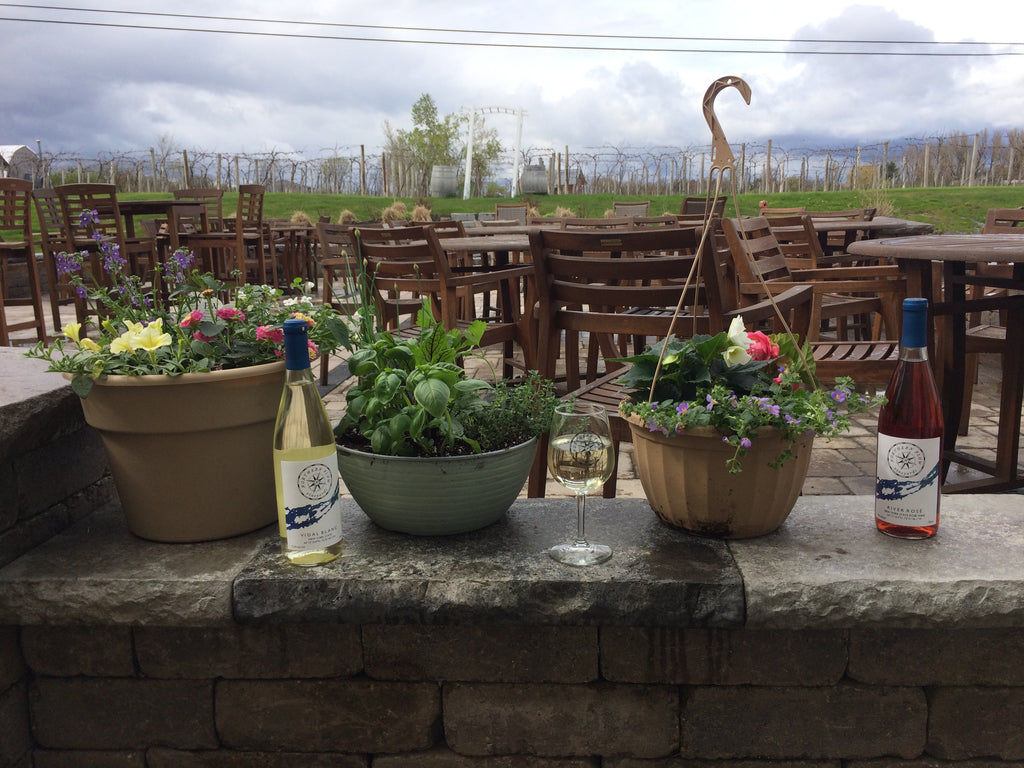 Plant and Sip with Kim on July 2 - Hanging baskets
