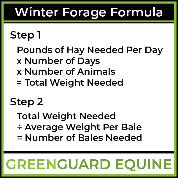 winter forage formula for horses