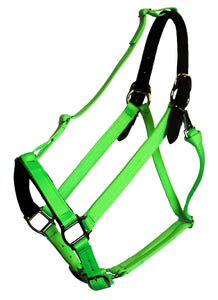 "GREENGUARD 1"" Premium Breakaway Leather Crown Halter"