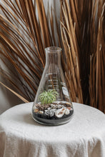 "Load image into Gallery viewer, ""Basic Beach"" Terrarium 02"