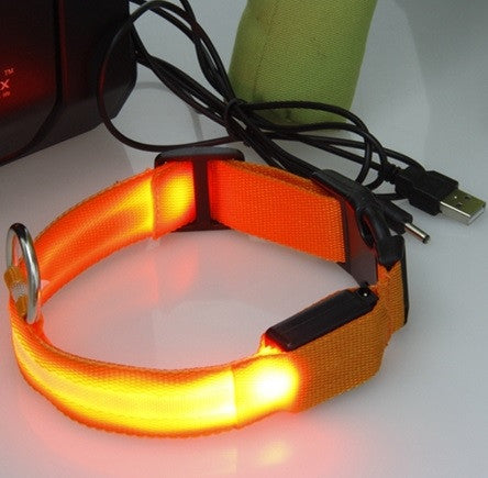 LED Lighted Dog Collar USB Rechargeable FREE SHIPPING!