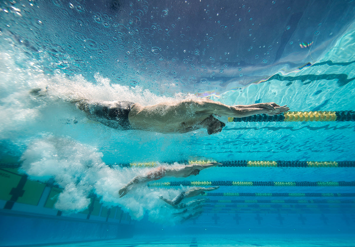 Sports photo of swimmers racing by Donald Miralle