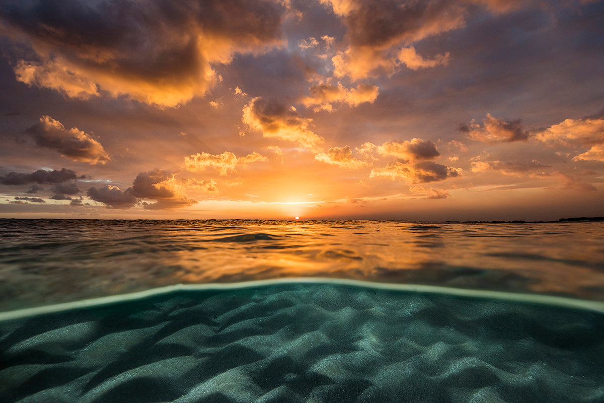 Photo of sun setting over the ocean taken by Sean Scott
