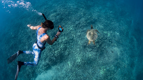 snorkeler taking picture of ocean tortoise underwater with AxisGo water housing for iPhone