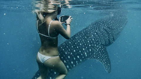 woman in bikini taking a picture of a whale shark with AxisGo water housing