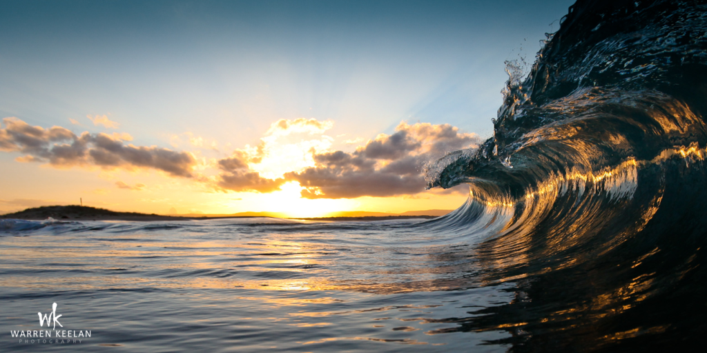 Sea Hawk by Warren Keelan