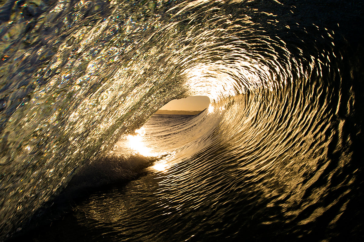 Curling wave catching the morning sunlight by Sean Scott