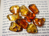 Baltic Amber tumbled stone