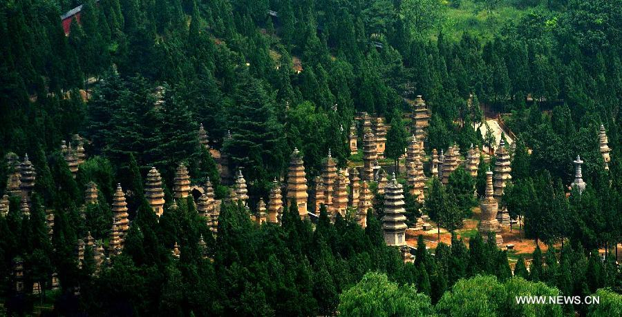 foret-pagodes-temple-shaolin