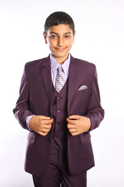 Boys Plum 5-PC Suit Set