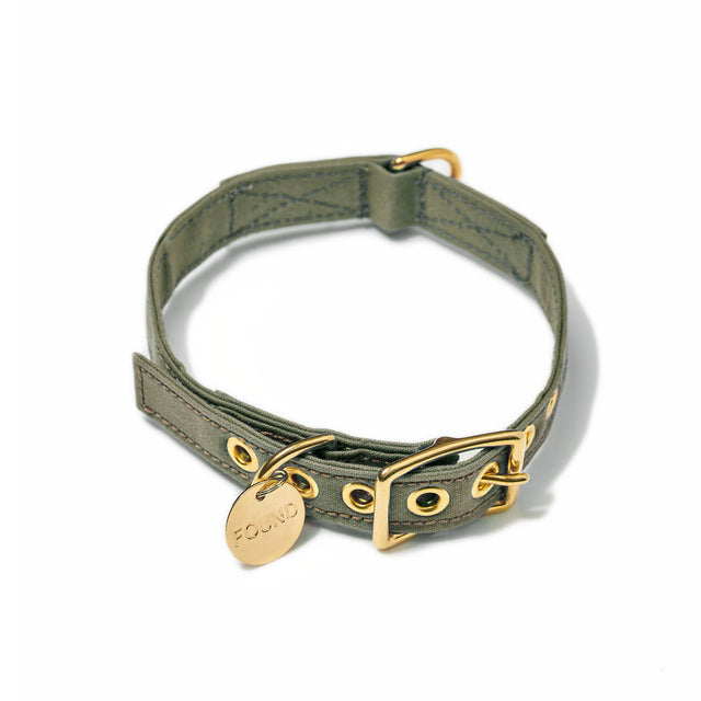 Olive Cotton Canvas Cat & Dog Collar