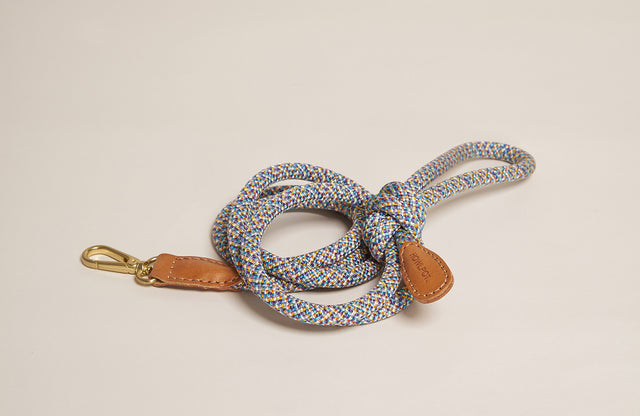 Howlpot Leash in Parrot